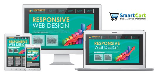 Professional Ecommerce Design